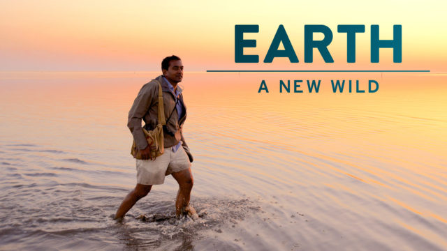 Earth The New Wild Image
