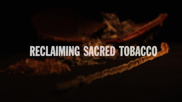 Reclaiming Sacred Tobacco